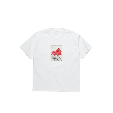 Polar Skate Co In Search of the Miraculous T-Shirt - White