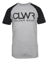 View the Colour Wear TTR T-Shirt - Grey Melange from the T-Shirts clothing range online today from Boarderline