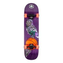 View the Welcome Hooter Shooter Complete Skateboard - 8.0 from the Complete Skateboards clothing range online today from Boarderline